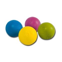 Balle en caoutchouc gravée pour chien (6)