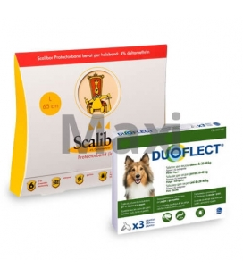 Pack Antiparasite Annuel BASIC DUOFLECT pour Chien Gros (1)