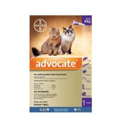 Advocate pour Chats 4-8 kg (1)