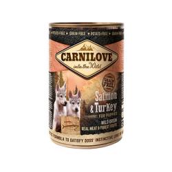 Puppy Saumon et Turquie Boîte (6)