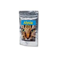 Alisya pour Chat