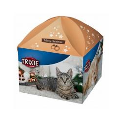 Boîte de Noël pour Chat (6)