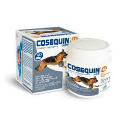 Chondroprotecteur Cosequin (6)