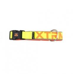 Collier X-TRM Nylon pour Chien, Couleur Jaune Néon (1)