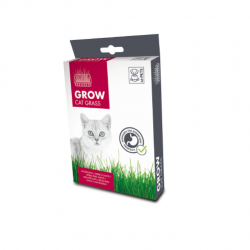 Herb à Chat Grow pour Chat (6)