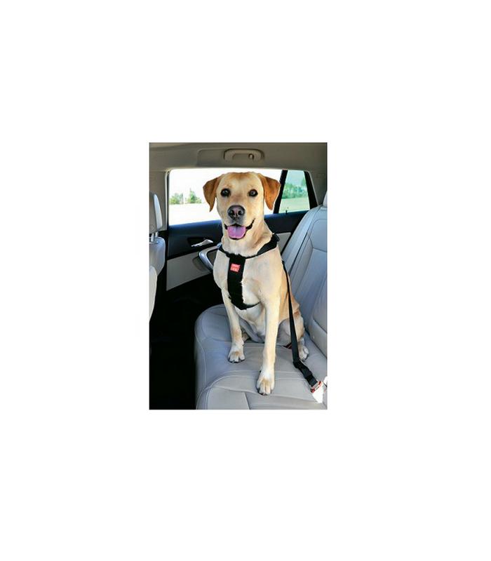 zolux harnais de s curit voiture pour chien. Black Bedroom Furniture Sets. Home Design Ideas