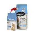 Ownat Classic-Feline Kitten (2)