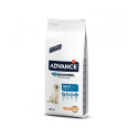 Affinity Advance-Adulte Grandes Races (1)