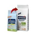 Affinity Advance-Junior Grandes Races (2)