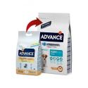 Affinity Advance-Chiot Petites Races (2)