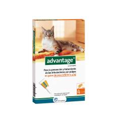 Advantage 40 Chat 1-4 kg (6)
