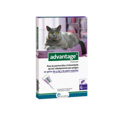 Ecuphar-Advantage 80 Chat +4 kg (1)