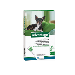 Advantage Pipettes Antipuces Chiens de 0-4 Kg et Chat (6)