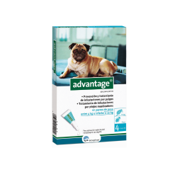 Advantage Pipettes Antipuces Chiens de 4-10Kg (6)