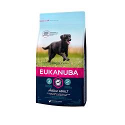 Eukanuba-Adulte Grandes Races (1)