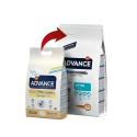 Affinity Advance-Chaton Poulet et Riz (2)
