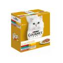 Gourmet Gold-Pack Double Plaisir Assortis (1)