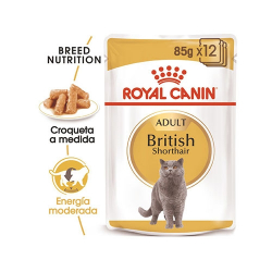 British Shorthair Pouch 85gr (6)