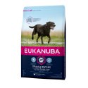 Eukanuba-Senior Grandes Races au Poulet (1)