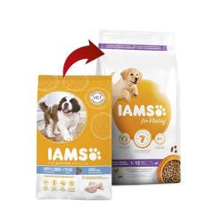 Iams-Chiot grandes races (1)