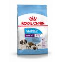 Royal Canin-Giant Puppy Races Géantes (1)