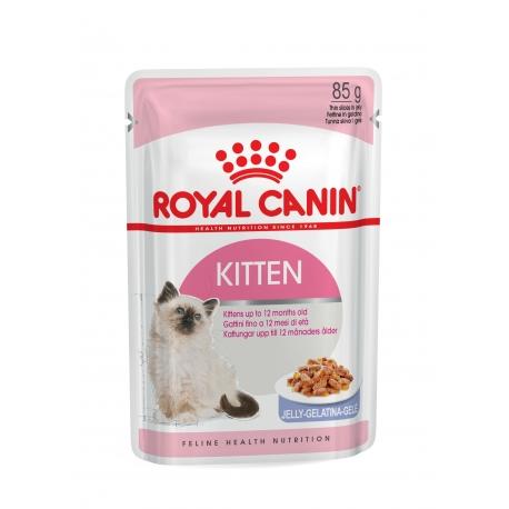 Royal Canin-Kitten Instinctive Pouch ( Jelly ) 85gr. (1)