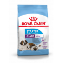 Royal Canin-Giant Starter Gestation/Allaitement (1)
