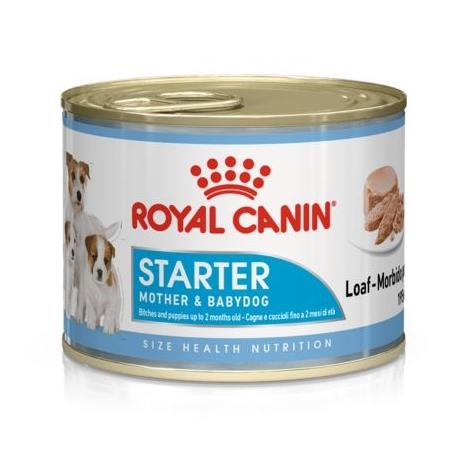 Royal Canin-Starter Mousse Gestation/allaitement (1)