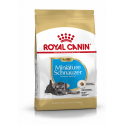 Royal Canin-Schnauzer Miniature Chiot (1)