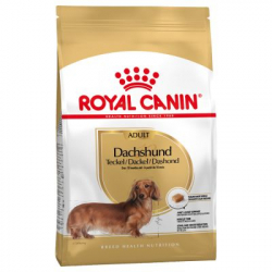 Royal Canin-Teckel Adulte (1)