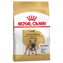 Royal Canin-Bouledogue Français Adulte (1)