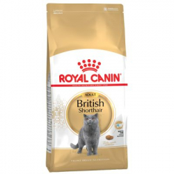 Royal Canin-British Shorthair Adulte (1)