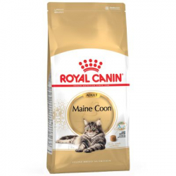 Royal Canin-Maine Coon Adulte (1)
