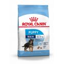 Royal Canin-Croquettes Maxi Junior Chiots Grandes Races (1)