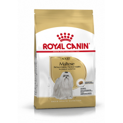 Royal Canin-Bichon Maltais Adulte (1)