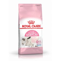 Royal Canin-BabyCat Gestation/Allaitement (1)