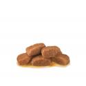 Royal Canin Veterinary Diets-Félin gastrointestinal sac 100 gr. (1)