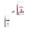 Royal Canin Veterinary Diets-Feline Renal Special (1)
