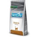 Farmina Vet Life Cat Diabetic dieta para gatos