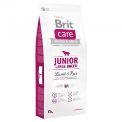 Brit care junior large breed cordero arroz pienso para perros
