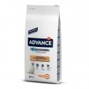 Affinity Advance-Labrador Adulte (1)