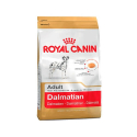 Royal Canin-Dalmatien Adulte (1)