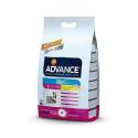Affinity Advance-Adult +8 Ans Petites Races (1)