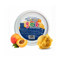 Glacé à l'abricot pour Chien (6)